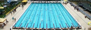 piscina-campionati